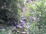 IMG_20110514_073027.jpg: 2592x1944, 1429k (May 14, 2011, at 01:30 PM)